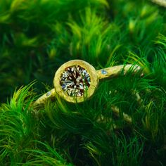 A combination of Storied Diamonds and Ele Keats Jewelry designs, this stunning 0.65 ct champagne diamond set in an 18 karat yellow gold rough bezel setting. Adorned with eight beautiful 1.2 millimeter diamonds, this ring combines raw and rough with delicate and elegant for a dazzling result.