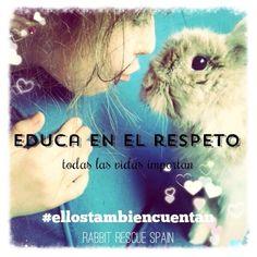 Educa en el respeto
