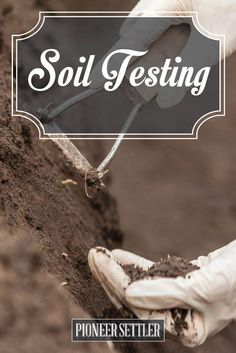 Soil Testing The Pioneer Way (No Equipment Needed) | 20 Garden Tips And Hacks That Will Help You Become a Gardening Expert