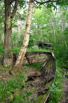 Boat in woods | digital deconstruction