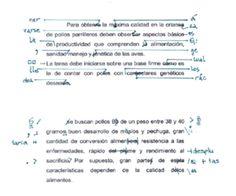 Corrector de textos - Wikipedia, la enciclopedia libre