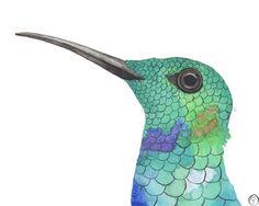 Hummingbird watercolor painting bird art by betweenforestandsea Watercolor Bird, Watercolor Paintings, Hummingbird Art, Green Gifts, Pigment Ink, Fine Art Paper, Etsy Store, Eco Friendly, Blue Green