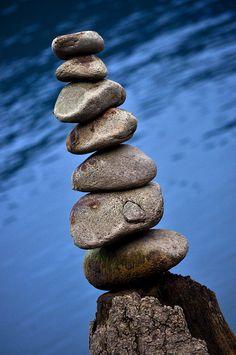 Rocks.
