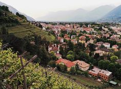 ...benvenuti a Merano  #merano #italy #italia #sudtirol #instatravel #wanderlust #bellaitalia #blogtroterzy #wineyard #wanderlust #soclose