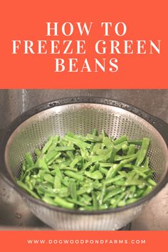 Green beans are a nutritious and delicious vegetable that can easily be frozen from your garden to have all year long. Freezing Vegetables, Fresh Vegetables, Fresh Herbs, Freezing Asparagus, Veggies, Freeze Fresh Green Beans, Frozen Green Beans, Vegetable Garden For Beginners