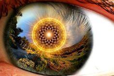 Activating Your Divine Blueprint Of Awakening