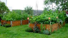 Sluta gräv - anlägg direkt på gräsmattan med pallkragar