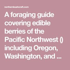 A foraging guide covering edible berries of the Pacific Northwest () including Oregon, Washington, and British Columbia. Backpacking Food, Oregon Washington, Pacific Northwest, British Columbia, North West, Berries, Healthy, Cover, Bury
