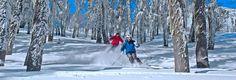 A apenas 20 km de San Martín de los Andes, em uma linda cidadezinha ao estilo alpino, pontuada de hotéis e restaurantes excepcionais, encontra-se o centro de ski de Cerro …
