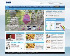 DIR // PROPOSTA DE DISSENY WEB // PROPOSAL WEB DESIGN