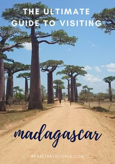 EAST TO WEST & BACK AGAIN: A GUIDE TO MADAGASCAR - After asking a few people who had recently been to Madagascar (looking through hashtags) I found out a tour was the best way to go. To be able to see and do as many things as I wanted to do, the ease of having someone else do it for me was key. Not to mention, safety is an issue that is less of an issue when booking through companies such as the one I did. By Sara Alexis for WeAreTravelGirls.com
