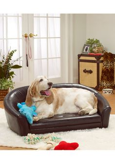 enchanted home pet The Artemis Bed.  Would love to get each one of our doggies one of these.