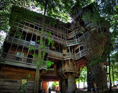 Tree House (apartment complex?) by Horace Burgess (In the early 1990s, landscaper Horace Burgess bought some wooded land on the outskirts of Crossville, Tennessee. One of the bigger trees, next to a dirt road, caught his eye. He decided to build the world's largest tree house in its branches.)