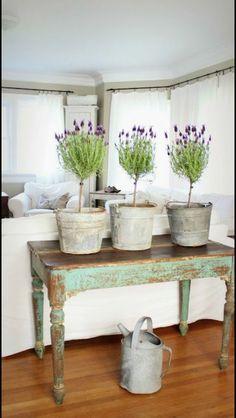 Décoration rustique style champêtre