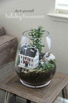 How to make an indoor holiday terrarium