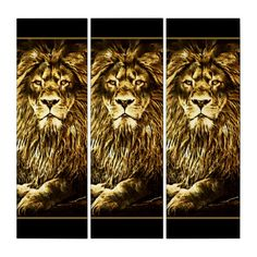 Shop Majestic Trio Lions Triptych created by ManCavePortal. Triptych Wall Art, Male Lion, Majestic Animals, Single Image, Photographic Prints, Big Cats, Art Boards, Lions, Portal