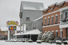 Dolly Parton's Dixie Stampede Dinner Attraction