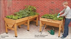 VegTrug™ Planters - Lee Valley Tools