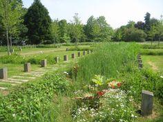 Osty et associés paysage urbanisme Landscape Architecture, Landscape Design, Parcs, Vineyard, Public Spaces, Outdoor, Gardens, Water Management, Landscape And Urbanism