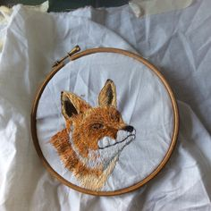 Fox. Work in progress. Irish wildlife series. www.violetshirran.com