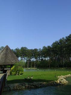 Dellinger Park - Home Facebook