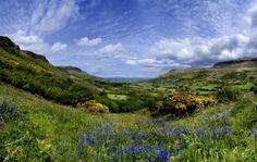 Ein irischer Frühling in 6 Aufnahmen Ireland.com | Ireland.com