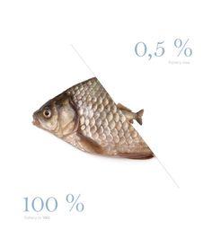 http://liesbethdk.files.wordpress.com/2012/06/fish.jpg