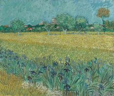 Vincent van Gogh / Field with Irises near Arles, 1888