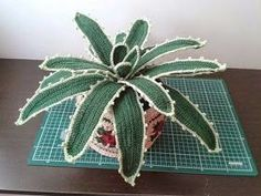 between a point and the other: The Agave crochet with potted TUTORIAL
