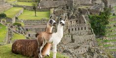 How to Plan your trip to Machu Picchu - Part 2 http://perutripsplanner.com/plan-your-trip-to-machupicchu2/