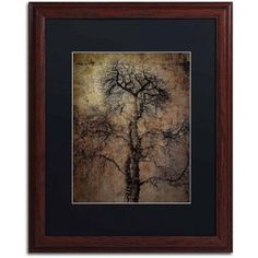 Trademark Fine Art Grungy Tree Canvas Art by Erik Brede, Black Matte, Wood Frame, Size: 16 x 20