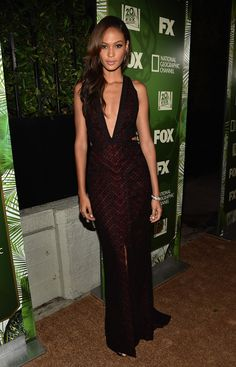 Joan Smalls Fox after party