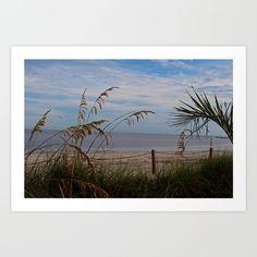 sanibel, island, beach, florida, sand, nature, gulf, water