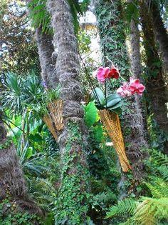 Photo of Heller Garden in Gardone Riviera Province of Brescia Italy