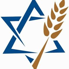 We exist to transform lives and see all Israel saved. It is the mission of Jewish Voice Ministries to: - Proclaim the Gospel - Grow the Messianic Jewish comm. Religious Studies, Bible Studies, Messianic Judaism, Logo Samples, The Covenant, Pyrography, Israel, The Voice, Graphic Design