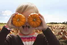 Autumn is here! The best fall festivals and events in San Jose and Silicon Valley, California
