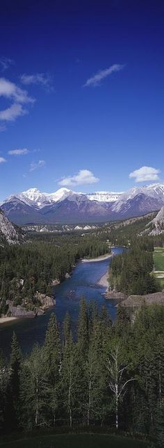 We've got a date sometime, Bow River. I'll be bringing my fishing rod.