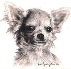 OMG this looks like a pencil sketch of my baby Bella Mae.