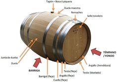 ¿Cómo se denominan las diferentes partes de la barrica de vino?