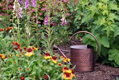 Five tips for weeding your garden...weed-free flower garden with mulch