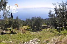 Building plot for sale with panoramic sea views in Nissaki North Corfu-CPA 3640 From: www.cpacorfu.com/en/properties/3640 Corfu Island, Corfu Greece, Plots For Sale, Land For Sale, Sea, Building, Nature, Travel, Construction