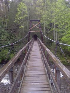 Toccoa River Swinging Bridge on the Benton Mackaye Trail in Georgia. Hiking. Outdoors.