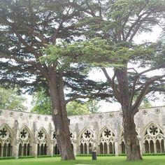 Salisbury Cathedral Salisbury, England