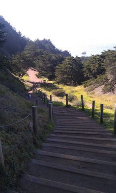 Lands End hiking trails, San Francisco.  Great place to run.