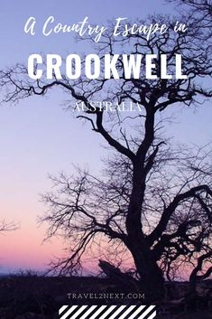 Why Crookwell is a Great Escape To The Country Countries Around The World, Around The Worlds, Stuff To Do, Things To Do, Largest Countries, South Wales, Far Away, Emerald, Travel Destinations