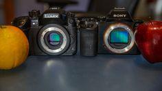 Panasonic GH4 vs. Sony A7s. No Film School. Dave Dugdale.