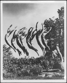 """Leon Levy BAM Digital Archive: Photograph: [Scene from the Ted Shawn & His Men Dancers production """"Dance of the Ages"""" during BAM Spring Series, Famous Dancers, Academy Of Music, Digital Archives, Alvin Ailey, Jazz Dance, Man Images, Modern Dance, People Photography, Vintage Posters"""