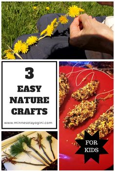 Three easy nature crafts to do with your child. Including how to make a dandelion crown, pine cone bird feeders, and nature paint brushes.