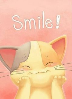 Just smile knowing i will not count your pins or block you!Sharing makes me smile! Crazy Cat Lady, Crazy Cats, Smiley T Shirt, Good Morning Quotes, Oeuvre D'art, I Love Cats, Cat Art, Make Me Smile, Cats And Kittens