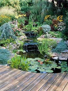 Every dream home should have a water garden like this one that is shown by Better Homes and Gardens. It is so peaceful and pretty to look at. #WaterGarden